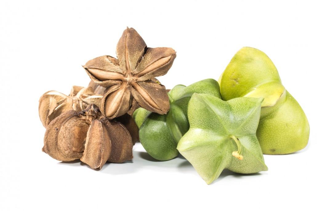 サチャインチオイルとは何ですか?サチャインチナッツと呼ばれる植物から取れる体に良い植物性油脂との事。