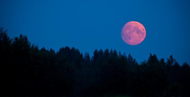 「ストロベリームーン」とはどういうもの?アメリカで言われている、赤く染まる6月の満月の事なのだそうです。