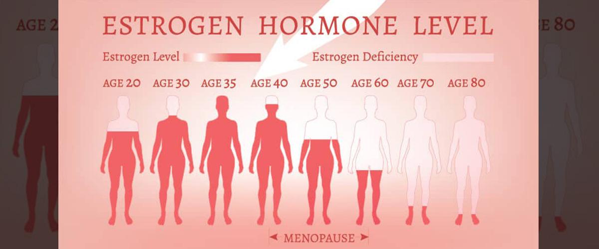 「エストロゲン」とはどういう意味?英語で「Estrogen」と記述するとの事。