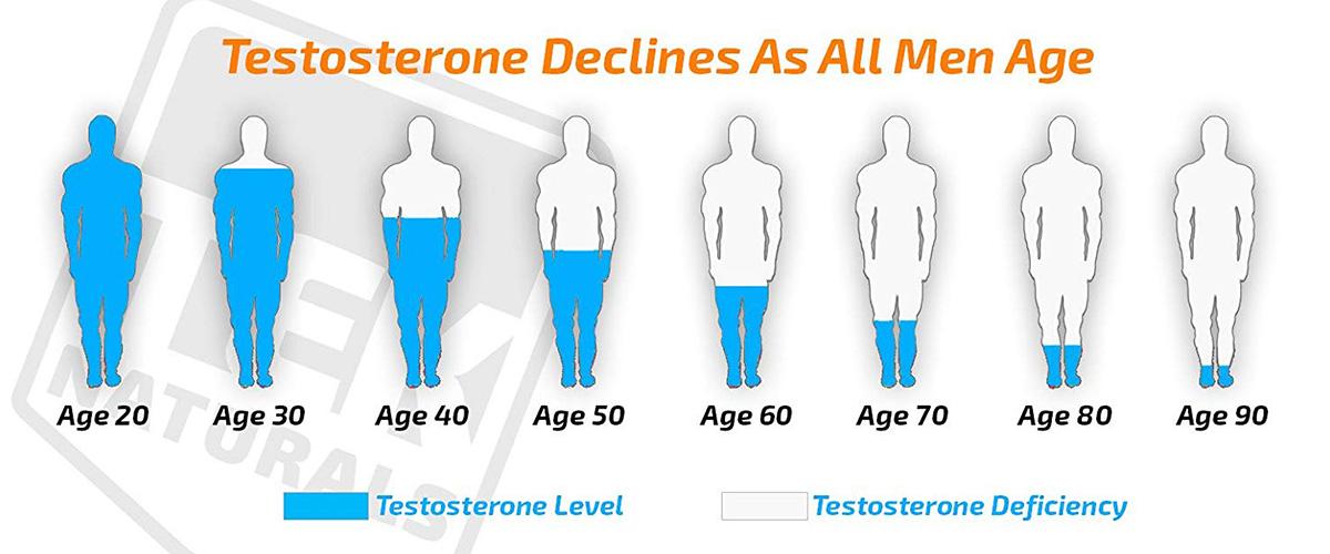 「テストステロン」とはどういう意味?英語で「testosterone」と記述するとの事。