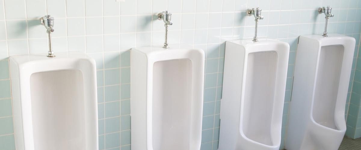 まれに、オシッコが濁る事がありますが、コレって病気?シュウ酸、尿酸、またプリン体のとり過ぎが原因との事。