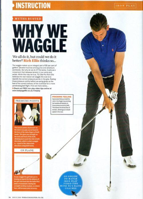 Waggle-Image