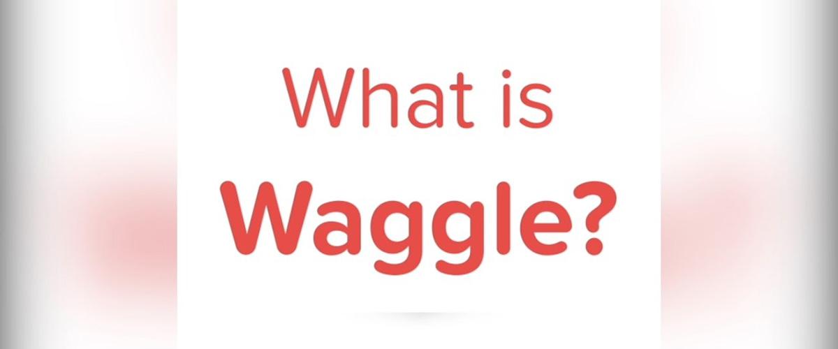 「ワッグル」とはどういう意味?英語で「waggle」と記述するとの事。