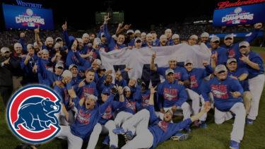 「シカゴ・カブス」とはどういう意味?英語で「Chicago Cubs」と記述するとの事。