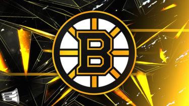 「ボストン・ブルーインズ」とはどういう意味?英語で「Boston Bruins」と記述するとの事。