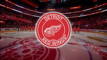「デトロイト・レッドウィングス」とはどういう意味?英語で「Detroit Red Wings」と記述するとの事。