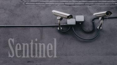 「センチネル」とはどういう意味?英語で「Sentinel」と記述するとの事。