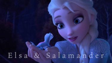 「エルササラマンダー」とはどういう意味?アルファベットで「Elsa Salamander」と記述するとの事。