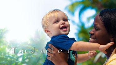 「トドラードール」の「トドラー」とはどういう意味?英語で「toddler」と記述するとの事。