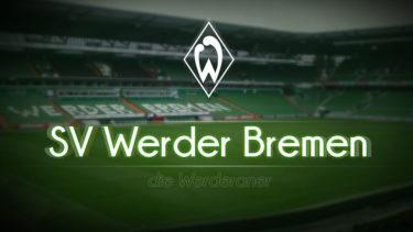「ヴェルダー・ブレーメン」とはどういう意味?ドイツ語で「Werder Bremen」と記述するとの事。