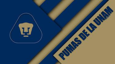 「クラブ・ウニベルシダ・ナシオナル」とはどういう意味?スペイン語で「Club Universidad Nacional」と記述するとの事。